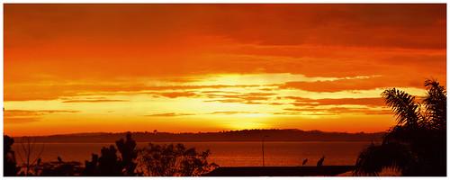 sunrise uganda ggaba