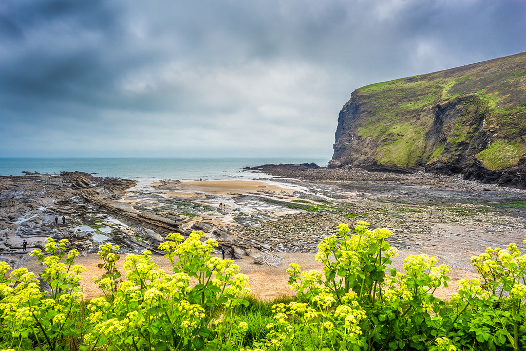 Crackington Haven, Cornwall, United Kingdom picture