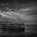 Hong Kong Harbour by alvin-ku