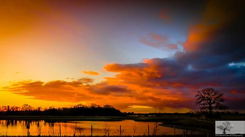 trees sunset sky pits silhouette bedford sundown scenic bedfordshire felton broom workings gravelpits robertfelton