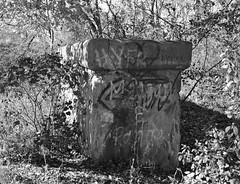 South Bridge Support at Cottonwood Creek, Allen, Texas 1411261344bw