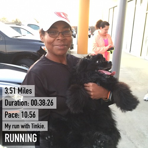 Totally surprised that Tinkie ran 3.51 miles with me and she could have done more. Thanks @nutrish for the kit! #instarunner #instapets #petstagram #runchat #runhappy #gtstrutters #fitfluential #fitbloggin