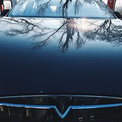 Future #Road #Tesla #TeslaS #P85 #Auto #Tree #Reflection - Photo of Branches