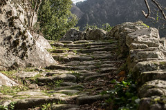 Muna steps