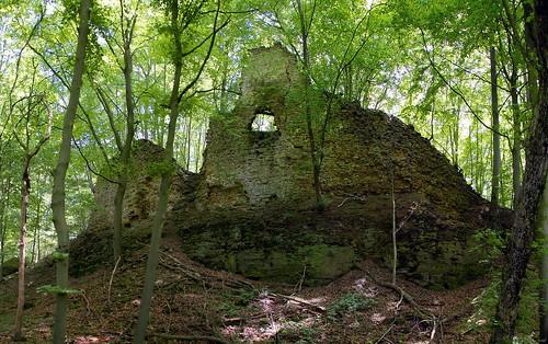 Haimburg Castle Ruin  III