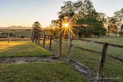 trees winter light sunset sun rural fence landscape gate afternoon farm maroon australia qld queensland sunburst cotswold sunstar 2016 hff scenicrim seqld sonya7r dpsriverrunpreset