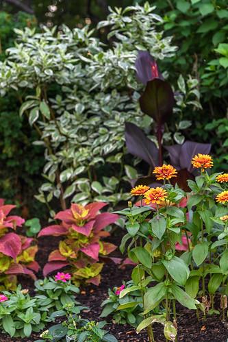 FilipWolak_Gardens_0125_0331