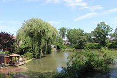 Cameron's Lake, Grasmere