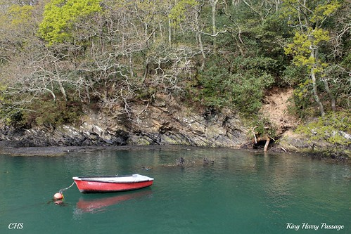 King Harry Ferry, River Fal, Cornwal by Stocker Images