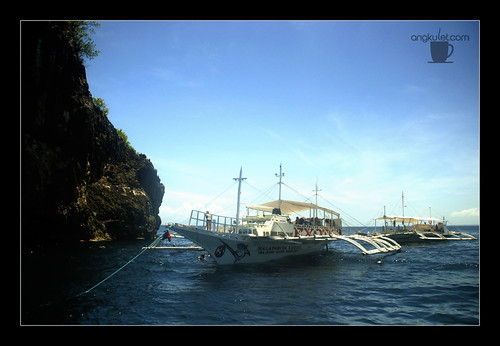 Diving in Gato Island, Cebu