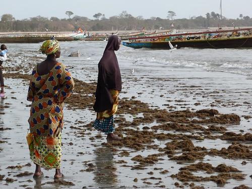 Mujeres en el mercado de pescado de Tanji (Gambia)