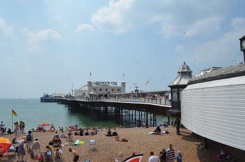 Brighton (23)