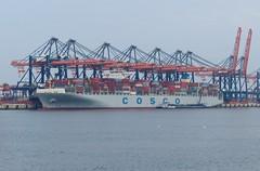Cosco Line at Rotterdam Port
