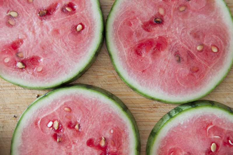 Watermelon HarvestIMG_3537
