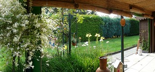 Garten-2013-03