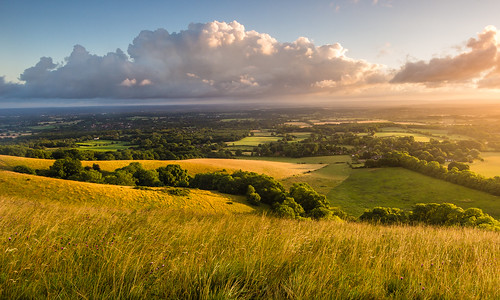 uk morning trees light england green clouds rural sussex countryside nationalpark day cloudy britain country gb fields southdowns pwpartlycloudy