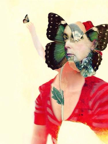 Butterfly by Sarah Jarrett