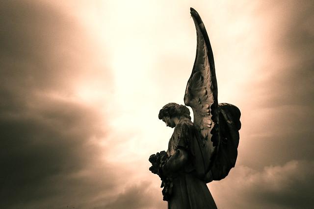 Anjos/Angels