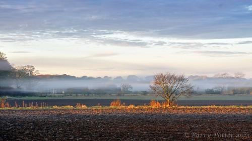 sunrise landscape nikon earlymorning pocklington eastyorkshire barrypotter yabbadabbadoo eastridingofyorkshire nikond90 barrypotternet nikkor28mm300mm3556ed edenmedia barrypotteredenmedia
