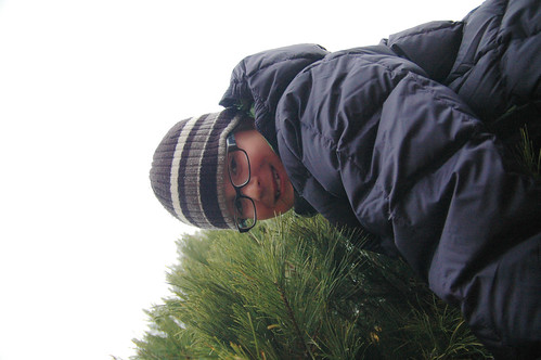 day 3073: christmas tree hunting on a not-so-snowy ridge. II.