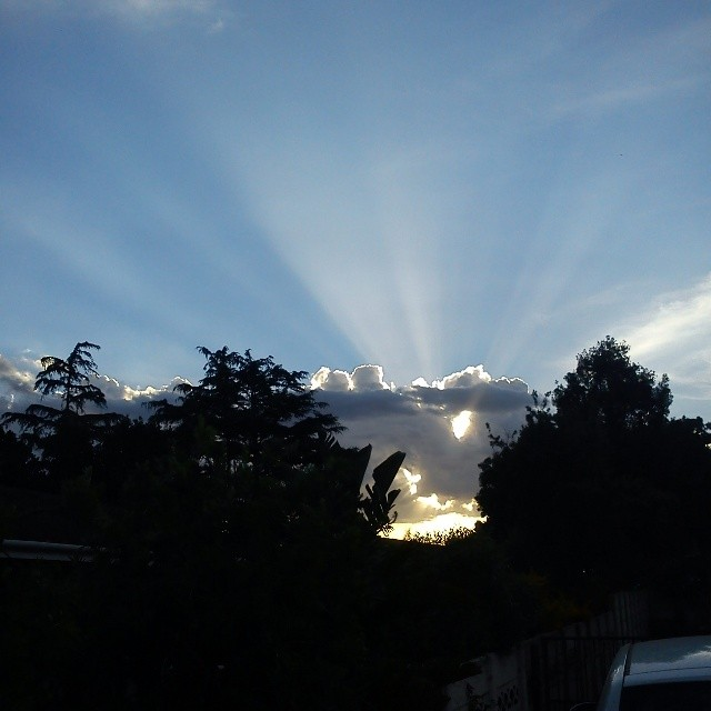 rays :)