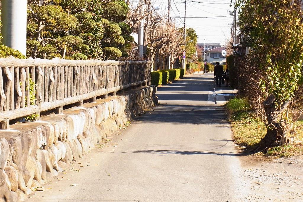RIMG0696 - 2014-01-02 07-22-42-akigawa