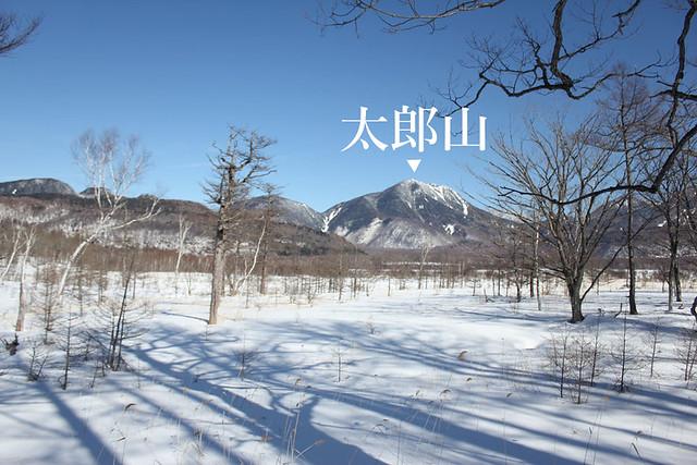 20140112_戦場ヶ原_0018