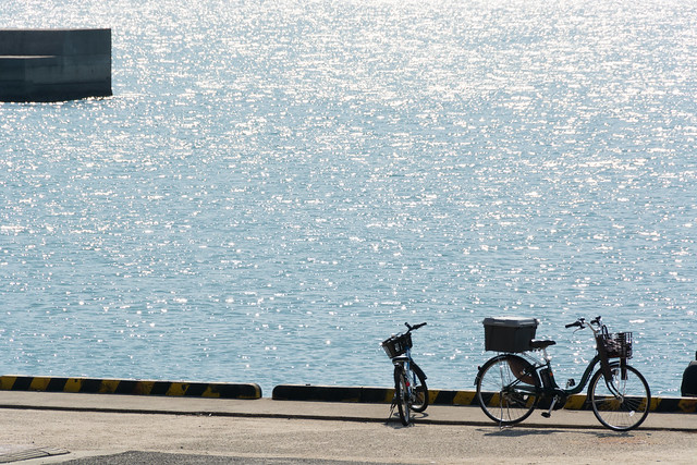 キラキラと自転車