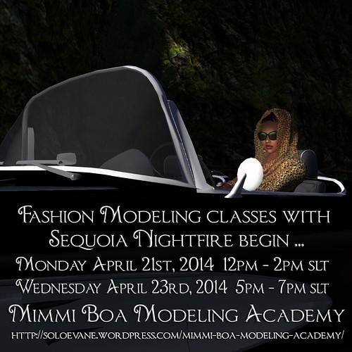 MBMA 2014 Summer Class poster