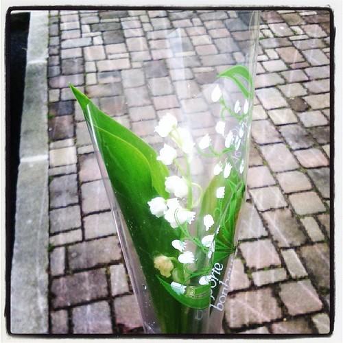 Joyeux 1er mai #muguet