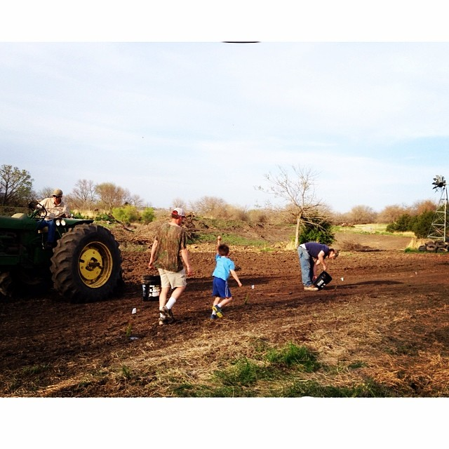 Boys planting trees at the farm. #178ofthem #trees #teamlucas #100happydays #day5
