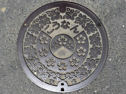 Konan Shiga, manhole cover (滋賀県甲南町のマンホール)