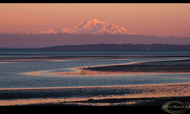 Last ligth at Boundary Bay, British Columbia, Canada