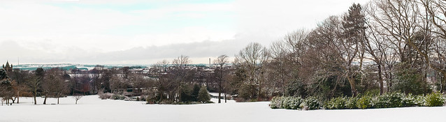 Panoramic views from the top of Locke Park