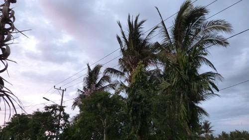 Bali-3-064