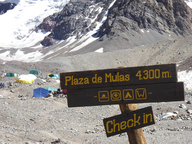 Plaza de Mulas