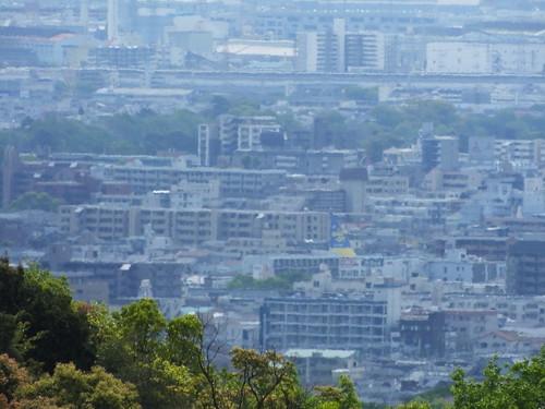 甲山森林公園にて (20)