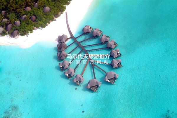 杜妮可鲁岛椰子棕榈度假村Coco Palm Dhuni Kolhu官方图片