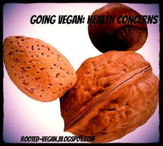 going vegan: health concerns