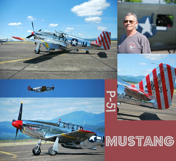 PicMonkey Collage-P-51mustang
