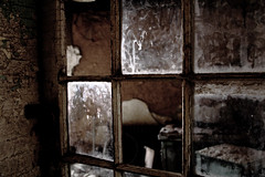 Looking Through Broken Glass at Eastern State Penitentiary