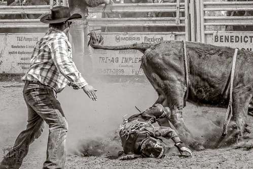 Gooseberry Lake : 4-H Rodeo 2013 : Denied!