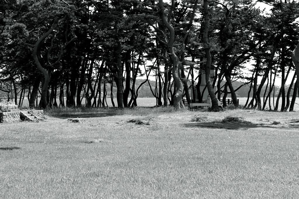 陸中国立海岸公園