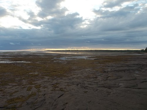 Low tide at Camp Buchan, Belfast, Prince Edward Island (12)