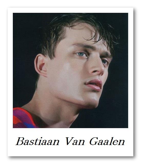Image_Bastiaan Van Gaalen