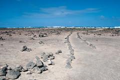 Lanzarote and Fuerteventura