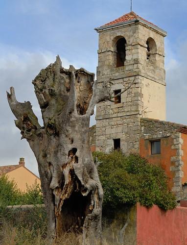 La Mierla - Ermita y tronco seco