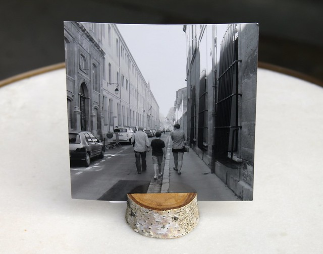 DIY Birch Branch photo/card holder
