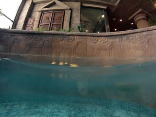 Piscina de Pomelos del Balneario de agua marina de Marina d'Or marina d'or - 14003700249 fa30f05689 n - Marina D'or, ciudad de vacaciones para niños y adultos