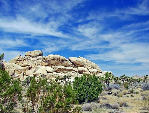 Desert Sky, Joshua Tree NP 2-13